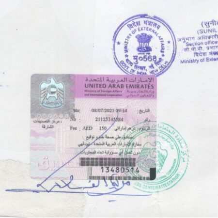 Ministry of External Affairs Stamp